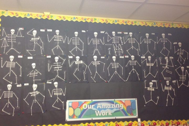 Spooky Skeletons!